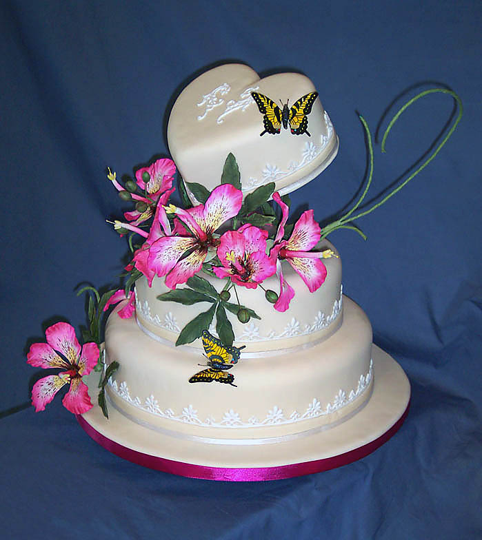 This cake was entered in the 2011 Marin County Fair and won Best of Show. Sugar Brazilian Kapok flowers, sugar Tiger butterflies and a single yellow ladybug.