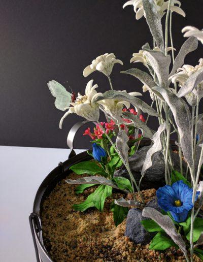 Edelweiss Butterfly 2