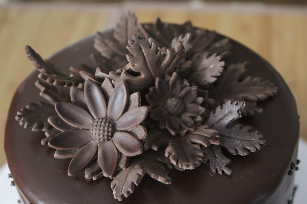 Chocolate daisy topper px